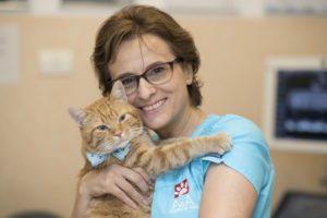 Cardiologie _ Dr. Alice Mihaela Radulescu